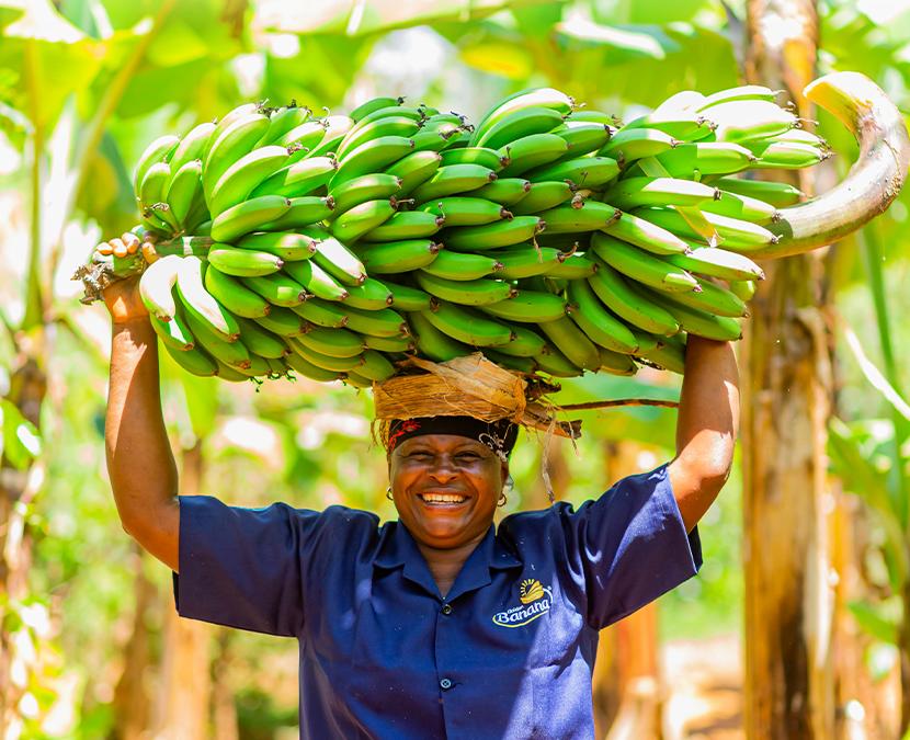 East Africa Fruits